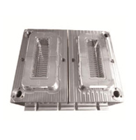 transparent case mould